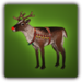 Rory the reindeer adolescent Solomon icon