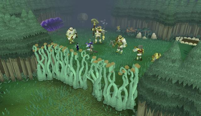 File:Orks Rift before explosion.png