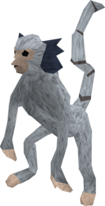 Monkey (blue and white) pet