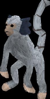 Monkey (blue and white) pet