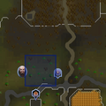Evil Tree (north of Draynor) location.png