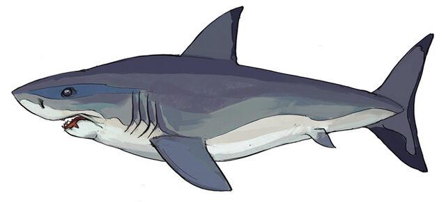 File:RS News Main Aquarium (5) update image.jpg