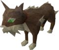Meiyerditch cat.png