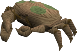 File:Baby giant crab (brown and green) pet.png