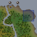 Gecko (green) location.png