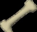 Long bone