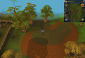Compass clue Digsite south-east of bright wisp colony.png