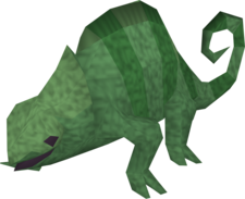 Adult chameleon (automatic)