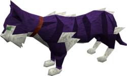 Wily cat (purple) pet