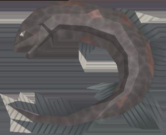 File:Burnt salve eel detail.png
