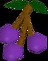 Lergberries detail.png