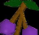 Lergberries