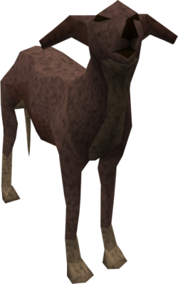 Greyhound (dark brown) pet.png