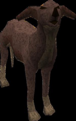 File:Greyhound (dark brown) pet.png