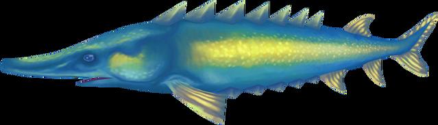 File:Leaping sturgeon (Aquarium).png