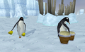 Ping & Pong on the iceberg.png