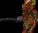Forgotten warrior
