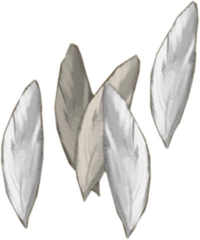 File:Silverhawk feathers detail.png