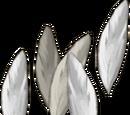 Silverhawk feathers