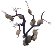 Big Chinchompa tree