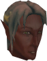 Elf warrior (Arandar) chathead