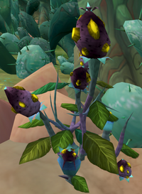 Mysterious flowers
