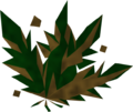 Grimy toadflax detail.png