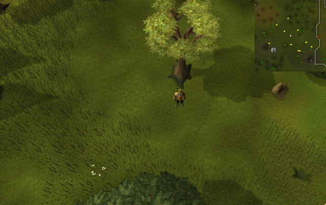 File:Compass clue Piscatoris west of Falconer.png