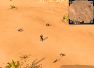 Compass clue south-western desert south-west of Exiled Kalphite Hive entrance