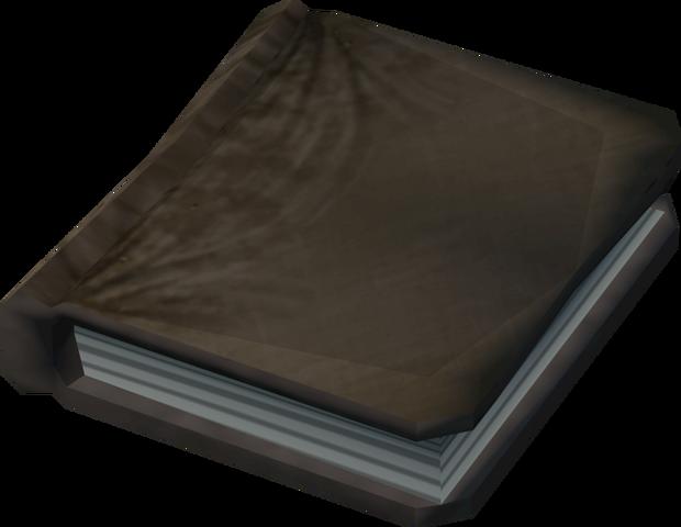 File:Sakirth's journal detail.png