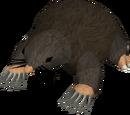 Giant Mole (historical)