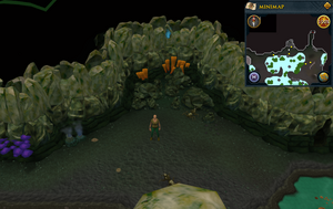 Scan clue Lumbridge Swamp Caves south-west of Dorgesh-Kaan mine entrance