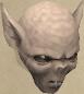 Vampyre juvenile chathead