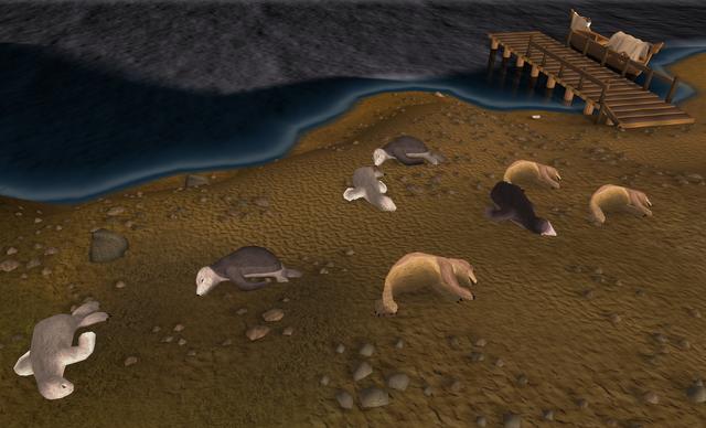 File:Seals sleeping.png