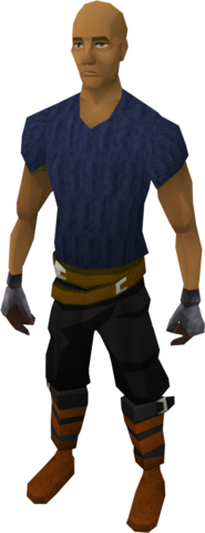 File:Steel gauntlets equipped.png