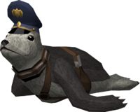 Bouncer (seal)
