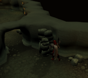 Sealing the Dagannoth's chamber