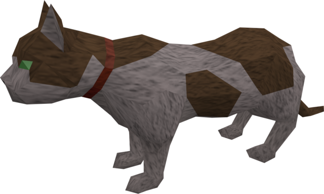 File:Overgrown cat (white and brown) pet.png