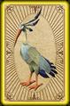 Preening ibis card detail.png