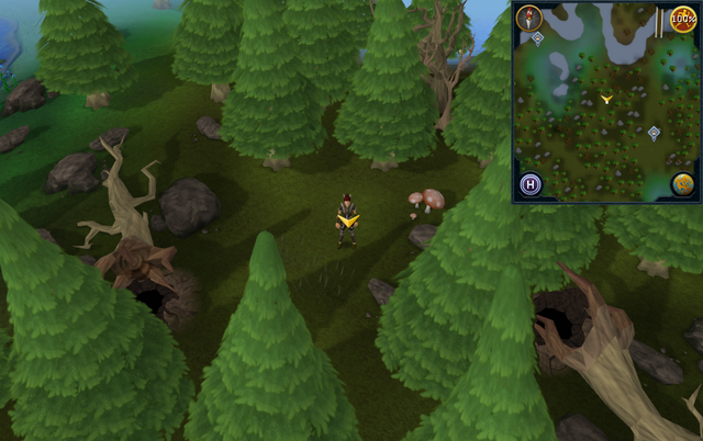 File:Scan clue Tirannwn south-east of Hunter training icon south of Elf Camp.png