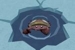 Fishing spot (Heim crab)