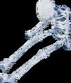 Skulls thief.png