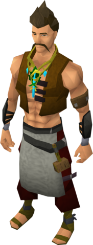 File:Crystal amulet equipped.png