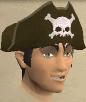 Pirate's hat chathead