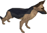 Dog (NPC).png