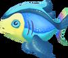 Rainbow fish (Aquarium)