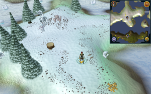 Scan clue Fremennik Isles by eastern woodcutting stump on south-west snowy island