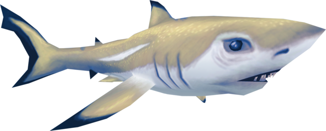 File:Shark (Aquarium).png