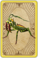 Trading mantis card detail.png
