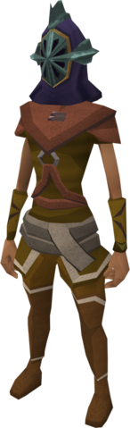File:Helm of Zaros equipped.png